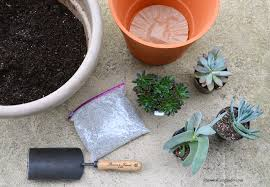 Soil Mix For Container Gardening - best succulent container garden soil mix shawna coronado