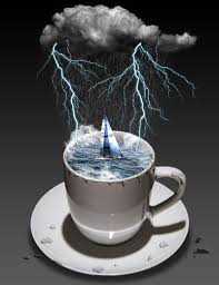 storm in a teacup storm in a teacup qubio