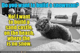 Funny Snow Memes - i m sick of snow lolcats lol cat memes funny cats funny