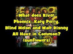 Lyrics To Change Blind Melon Change Blind Melon Blind Melon Pinterest Songs