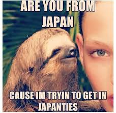 Whispering Sloth Meme - sloth meme whisper are you from japan cause im tryin to get in
