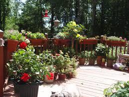 native plants and wildlife gardens ecosystem gardening