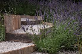 garden rocks and their role and impact on the landscape healthy