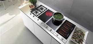 cuisson cuisine domino de cuisson electroménager et univers électronique