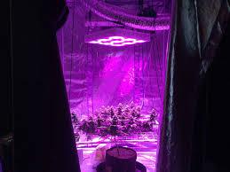 5 barriers to led grow light hps vs led grow lights