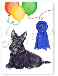 scottish terrier gifts cards pet tags