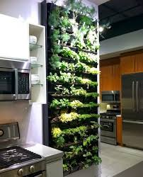 plants for on top of kitchen cabinets quality silk plants year around herb garden at your