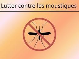 moustique dans ma chambre articles de directioner252 taggés moustiques hey everybody