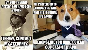 Benson Dog Meme - fancy dogs imgur