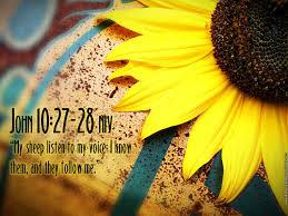 thanksgiving bible verses kjv bible verse desktop wallpaper download hd christian bible verse