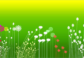 100 flower background for powerpoint 32 flowers backgrounds