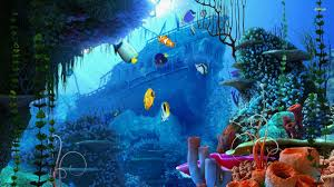 wallpapers under water group 78