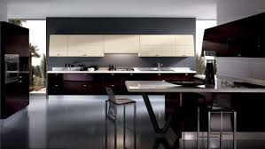 black modern kitchens design u0026 decorating clean elegant dark black kitchen room design