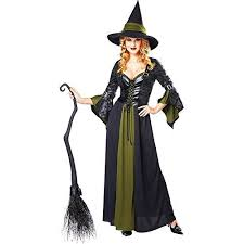 Witch Costume Halloween 26 Shrek Witch Images Witch Costumes Wicked