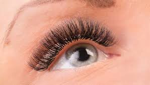 3d extensions buy 3d pre fanned volume lash extension also called w lashes