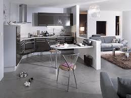 cuisine et salon deco cuisine ouverte sur salon