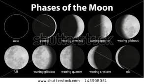 illustration phases moon stock vector 143998951
