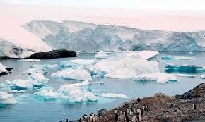 imagenes de la antartida la antártida un termostato que regula el clima del planeta el