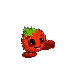 strawberry neopets wiki fandom powered by wikia