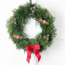 christmas plants christmas plants plant gifts free delivery flying flowers