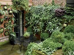 homelife 10 best plants for vertical gardens julianne moore u0027s verdant new york city garden garden photos