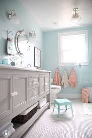 Decorating A Bathroom by 25 Best Coastal Bathrooms Ideas On Pinterest Coastal Inspired