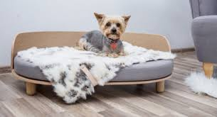 dog milk modern dog beds dog houses u0026 crates