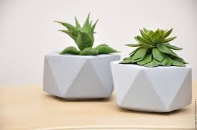 buy little pot of concrete decaeds for succulents and cacti on