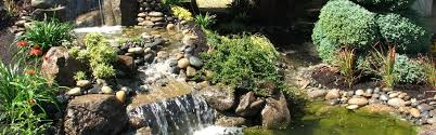 Landscaping Portland Oregon by Preferred Landscape Portland Oregon Landscaping Contractor