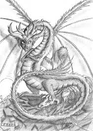 sketches of dragons with pencil vanthica u0027s ventures or something
