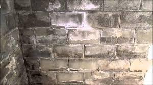 identifying moisture on basement walls home inspection tips