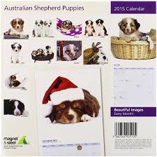 australian shepherd 2015 amazon com australian shepherd mini 2015 wall calendar pet