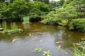 real oasis in the city visit the beautiful japanese garden in the