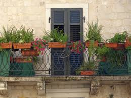 free images flower home wall balcony backyard facade