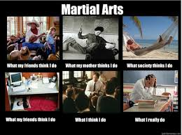 Martial Arts Memes - martial arts what my friends think i do what my mother thinks i do