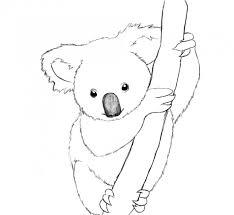 Coloriage Koala mandala dessin gratuit à imprimer