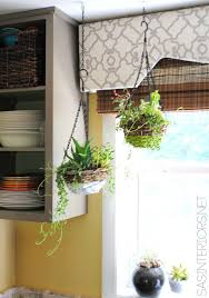 creative indoor planter ideas for your apartment rent com blog