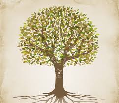 116 best family tree generator images on family tree
