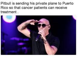 Pitbull Meme Dale - pitbull meme tumblr