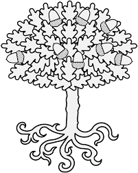 Oak Tree Drawing Oak Traceable Heraldic Art