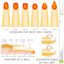 different types acrylic nails nails art ideas