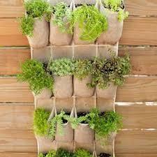 wall vertical vegetable garden great vertical vegetable garden