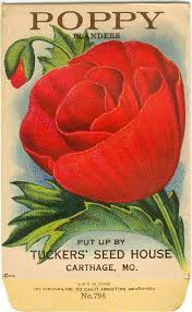 flower seed packets vintage flower seed packet tuckers seed house lithograph poppy