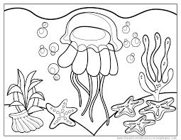 november 3 u2013 world jellyfish day