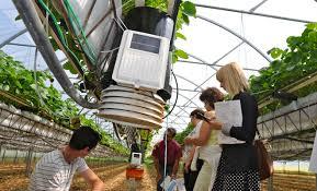 chambre d agriculture de la dordogne innov un outil de pilotage de l irrigation en fraise hors