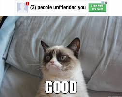 Angry Cat Meme Good - good grumpy cat on being unfriended fun memes pinterest