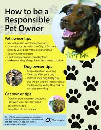 pet owner responsibilities city of oshawa
