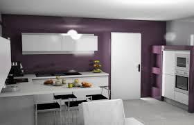 cuisine mur aubergine mur cuisine aubergine meuble cuisine aubergine cdiscount