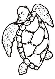 turtle coloring sheets for kids coloring pages