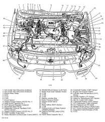 triton v8 engine diagram triton wiring diagrams instruction